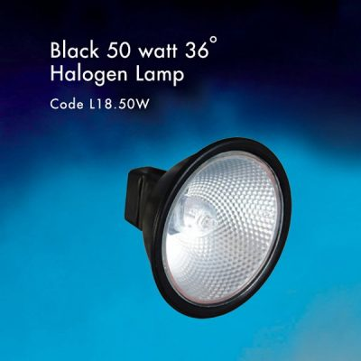 Black 50 watt Halogen lamp